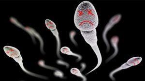 các yếu tố ảnh hưởng đến tinh trùng